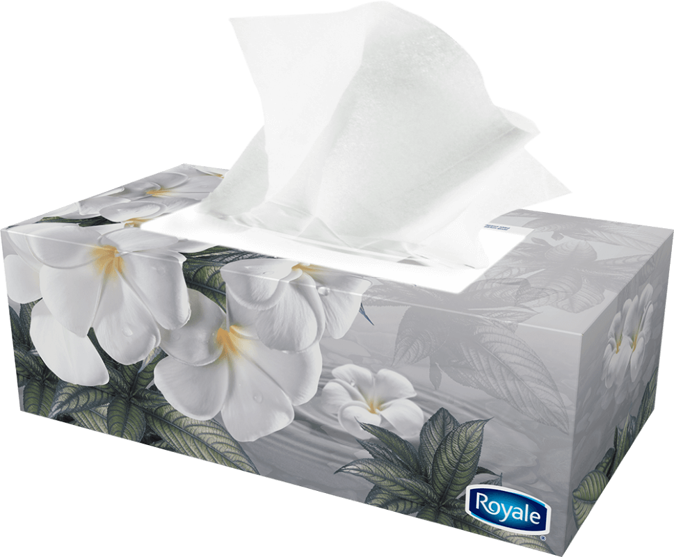 tissues 2 ply chemical solutions